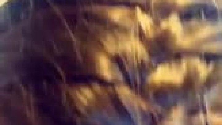 Practice hair 4/4